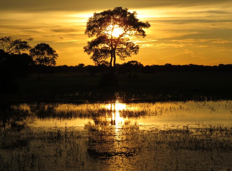 Deux itinéraires exceptionnels pour des séjours au Brésil authentiques
