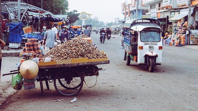 Voyage au Vietnam une expérience locale