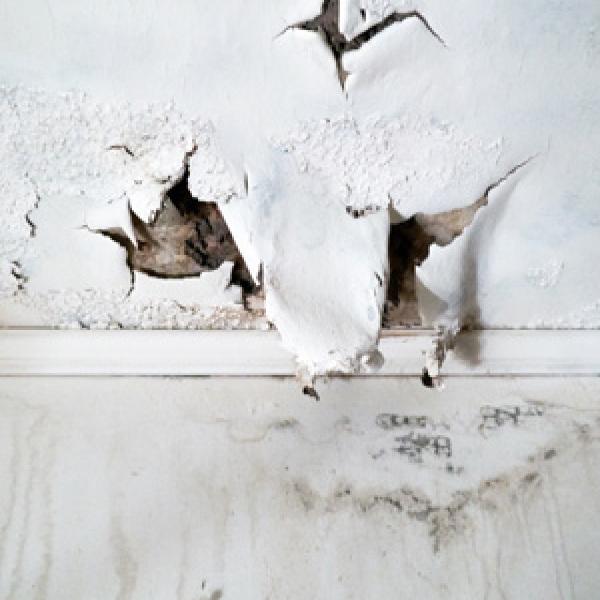 Placo du plafond endommagé après dégâts des eaux que faire?